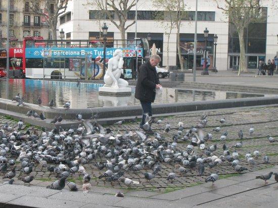 Olivia Plaza Hotel: В 100м от отеля можно подкормить голубей.