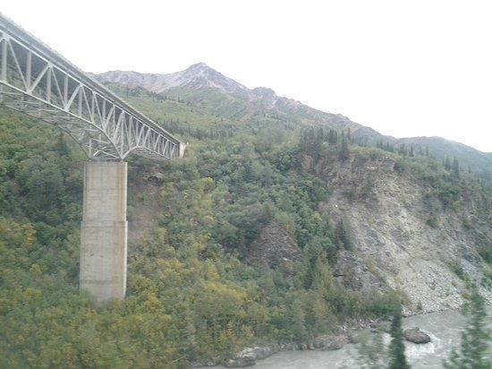 McKinley Explorer: From Fairbanks to Denali (14)