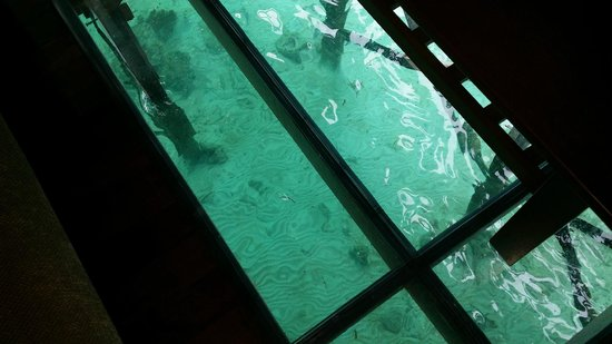 Mabul Water Bungalows: floor