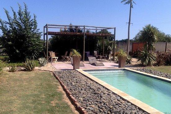 Lemon3Lodge Guesthouse : pool view