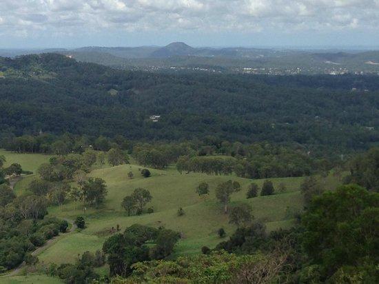 Treetops Seaview : Views….views…...