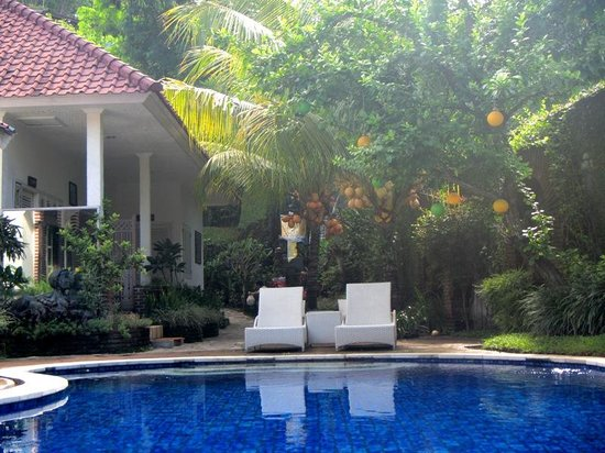 Sendok Hotel: Swimming Pool