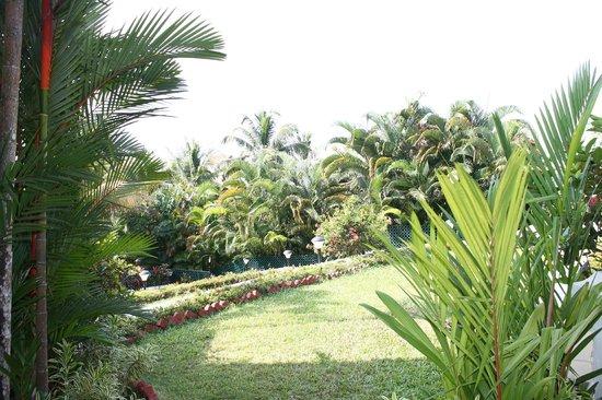 The Gateway Hotel Janardhanapuram Varkala: front of my room