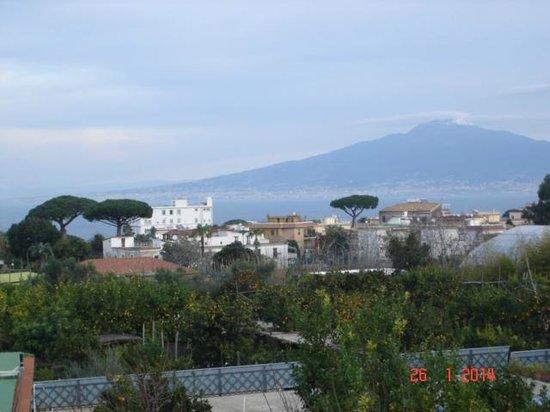 B&B Il Roseto : Mare e giardino dal balconcino della camera