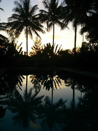 Stay Simple - Raj Gardenia: View from Pool at 7 am