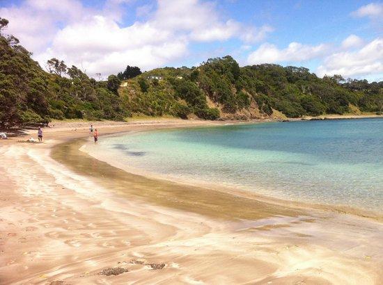Otamure Bay (Whananaki) Campsite: Tauwhara Bay (near Otamure Bay)