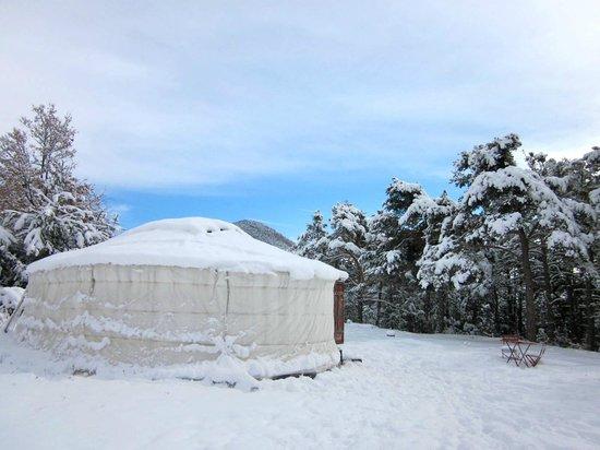 Destination Ailleurs: sous la neige comme en mongolie