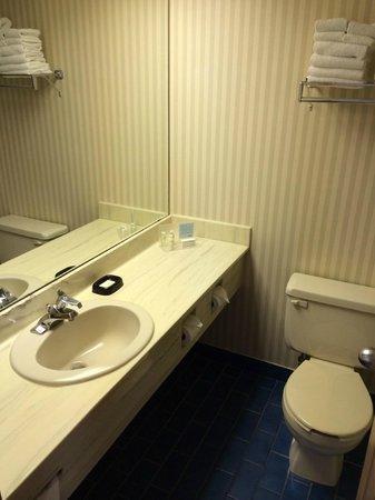 Clifton Victoria Inn at the Falls: Bathroom
