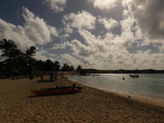Caribbean Paddling: Pinel Island
