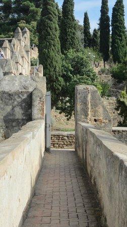 Castillo de Gibralfaro : Gibralfaro
