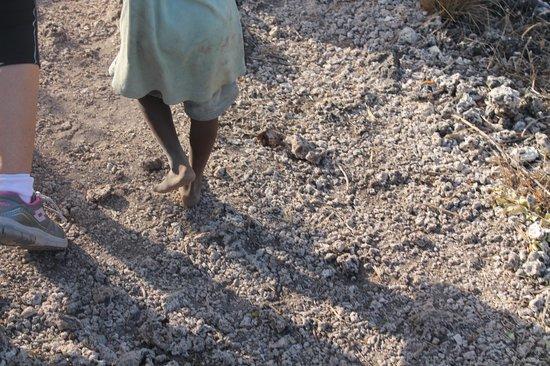 Jumbo Watamu: vedasi scalzi su roccia