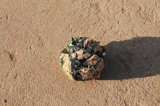 Jumbo Watamu: visto che palla