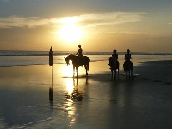 Bali Equestrian Centre: Sunset Beach Ride