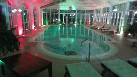 Hotel Palmenwald Schwarzwaldhof: Piscine