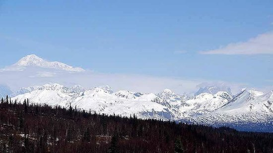 Mt. McKinley Princess Wilderness Lodge : Mt. McKinley