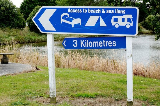 Catlins Newhaven Holiday Park : Beach