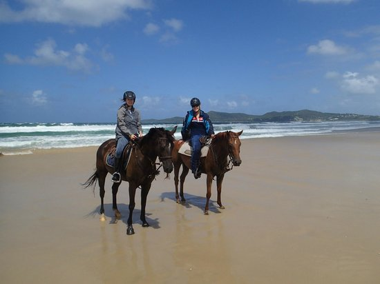 Equathon Horse Riding Tours - Day Tours : enjoying being back in the saddle