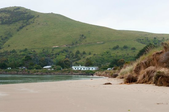 Catlins Newhaven Holiday Park : The Beach at Newhaven