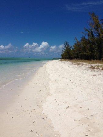 Le Refuge: petite excursion sur une ile voisine