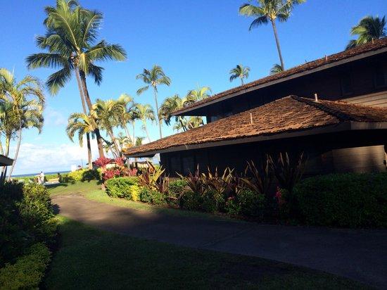Royal Lahaina Resort: Back side of cottage