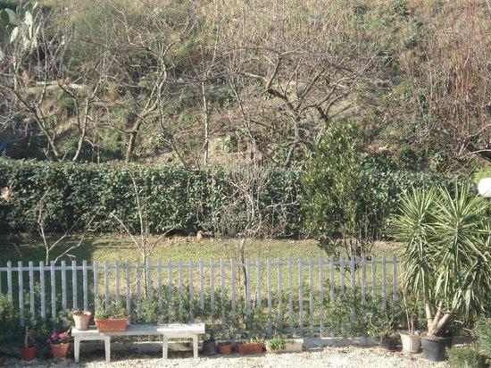 Giardino kuva residence chiara chieti tripadvisor - Giardino d abruzzo ...