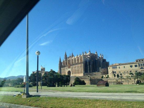 Hotel Saratoga : Maravillosa cathedral de Palma de mallorca a solo 10 min. caminando por el paseo maritimo!