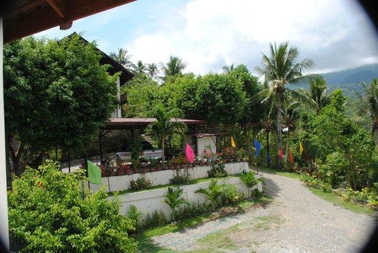 Tribal Hills Mountain Resort : Landschaft