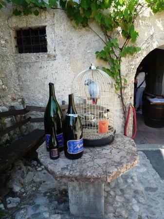 Castillo de Bled: BOTELLAS CORTADAS A ESPADA