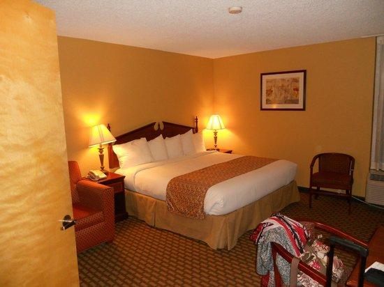 BEST WESTERN Intracoastal Inn: lit king size