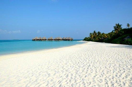 Coco Palm Dhuni Kolhu : plage et lagoon villas