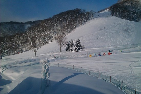 The Green Leaf Niseko Village : View from the restaurant area of this lovely hotel...