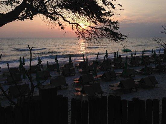 Veranda Lodge : Morgen idyl