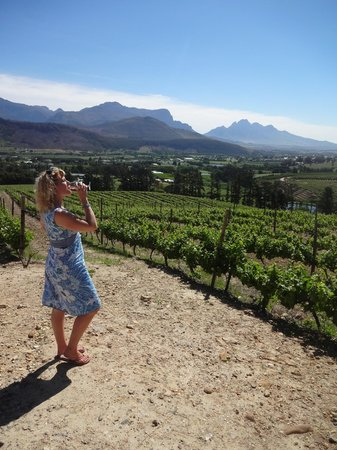 Easy Rider Specialist Wine Tours : Enjoying the view