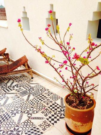 Riad Vert Marrakech: Skønhed på tagterassen