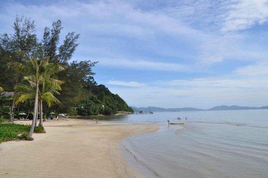 Gaya Island Resort : beach