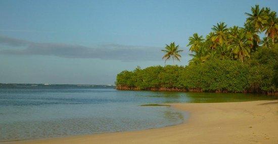 Grand Bahia Principe El Portillo : A praia... linda