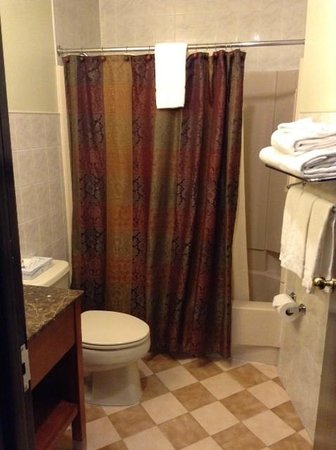Broadway Plaza Hotel: Spotless Bathroom with Hairdryer