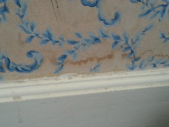 Hotel des Grandes Ecoles: wall stains