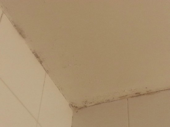 Hotel des Grandes Ecoles: bathroom ceiling