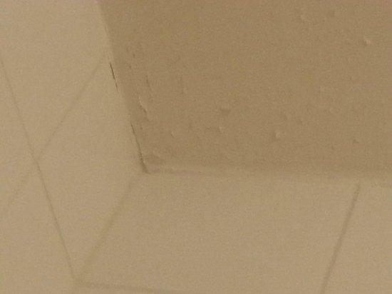 Hotel des Grandes Ecoles: bathroom paint peeling