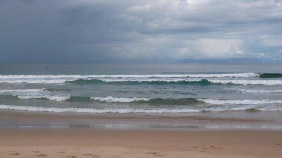 Pebbly Beach: surf