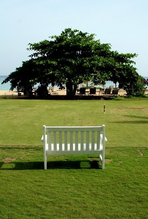 Jamaica Inn: Croquet Room