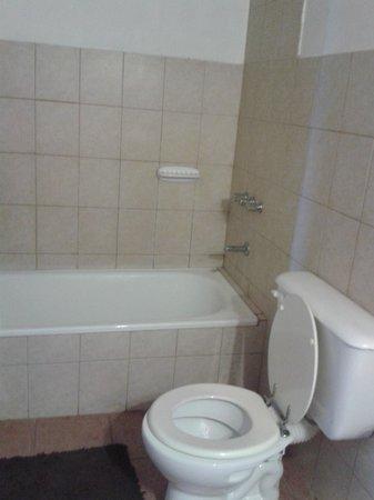 Amigos Apart Hotel : baño