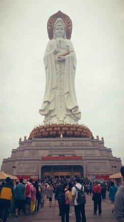 Nanshan Temple : Feb 2014