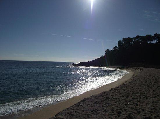 Hotel Samba: Beach