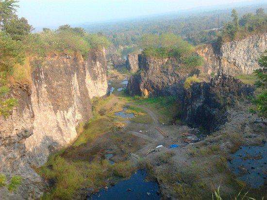 Kodanand Elephant Training Centre : Near kuruppampady. pettamala hills