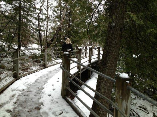 Lutsen Resort on Lake Superior: Pigeon River State Park
