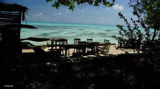 Red Monkey Beach Lodge : Là où l'on mange