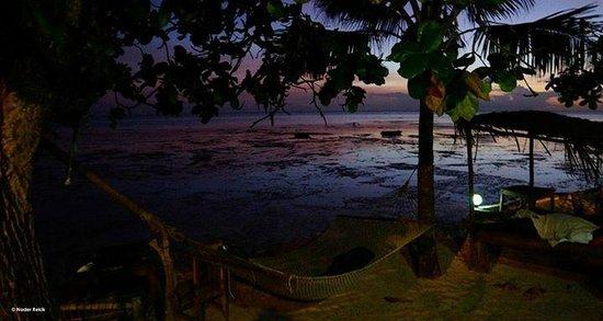 Red Monkey Beach Lodge : vue de la chambre