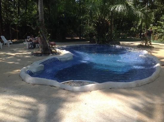 Papillon Bungalows: klein maar fijn zwembad in mooie tuin